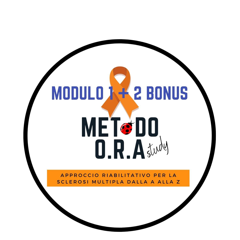 MOGO MODULO 1 + 2 BONUS